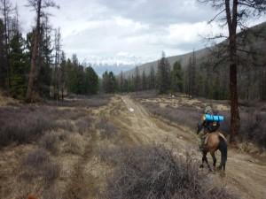 horse ride to kurray altay region