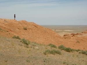 bayanzac clif gobi desert